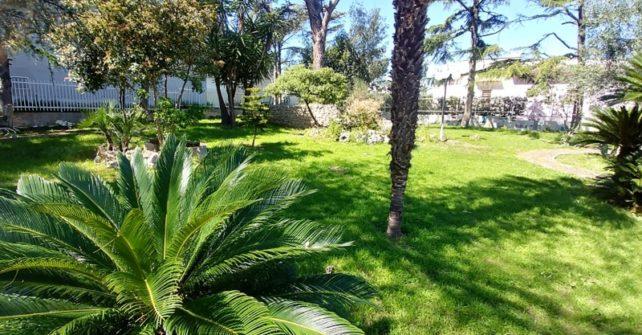 bisceglie B&B villa garden